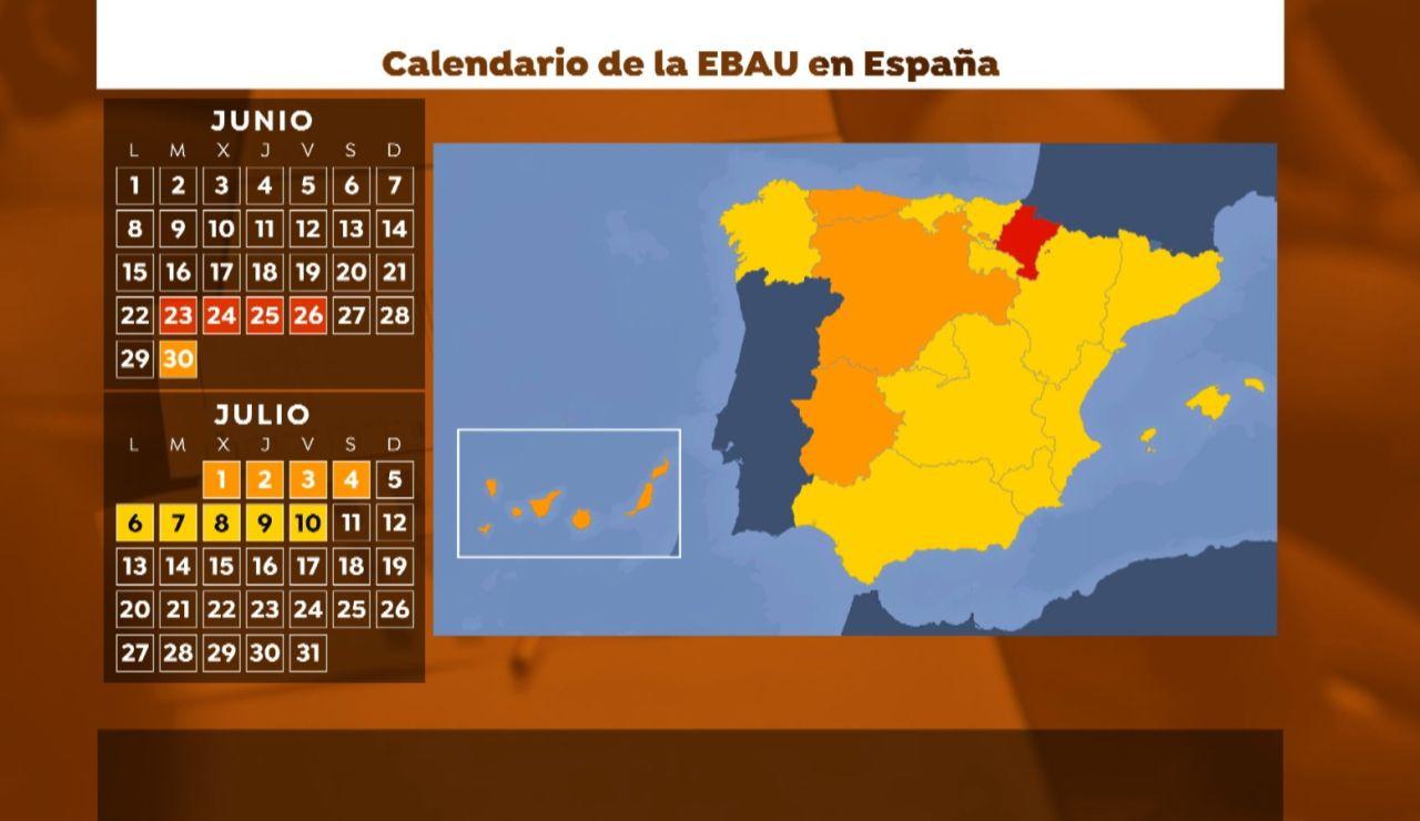 Calendario de la EBAU en España 2020