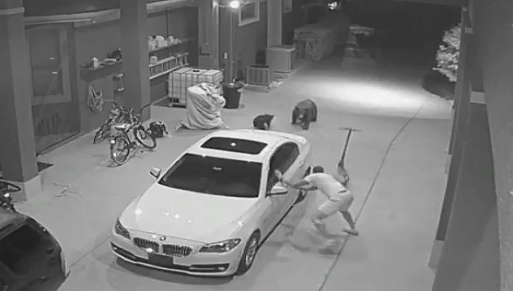 El tremendo susto de un jugador de la NFL al encontrarse con dos osos en su garaje