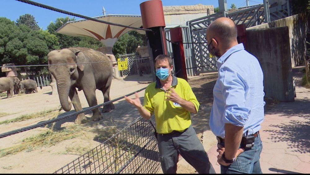 Reabre el Zoo