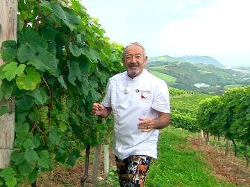 Karlos Arguiñano controla la uva del Txakoli desde su espectacular huerto