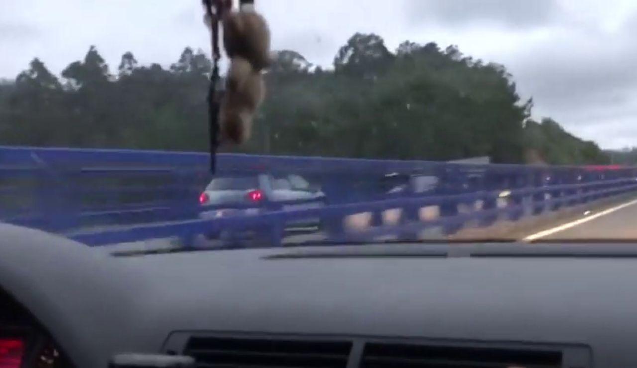 La desesperación de un conductor al intentar parar a otro que circula en sentido contrario 10 km en A Coruña