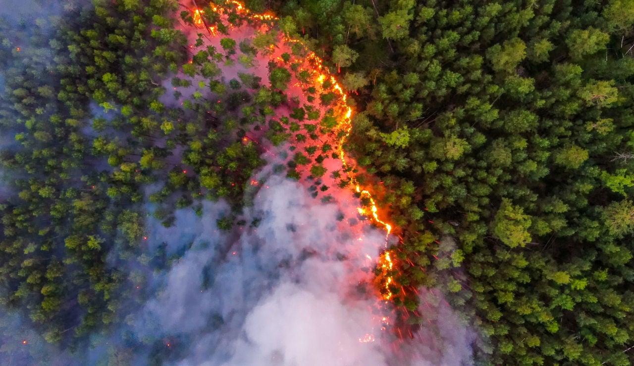 Incendio en Siberia