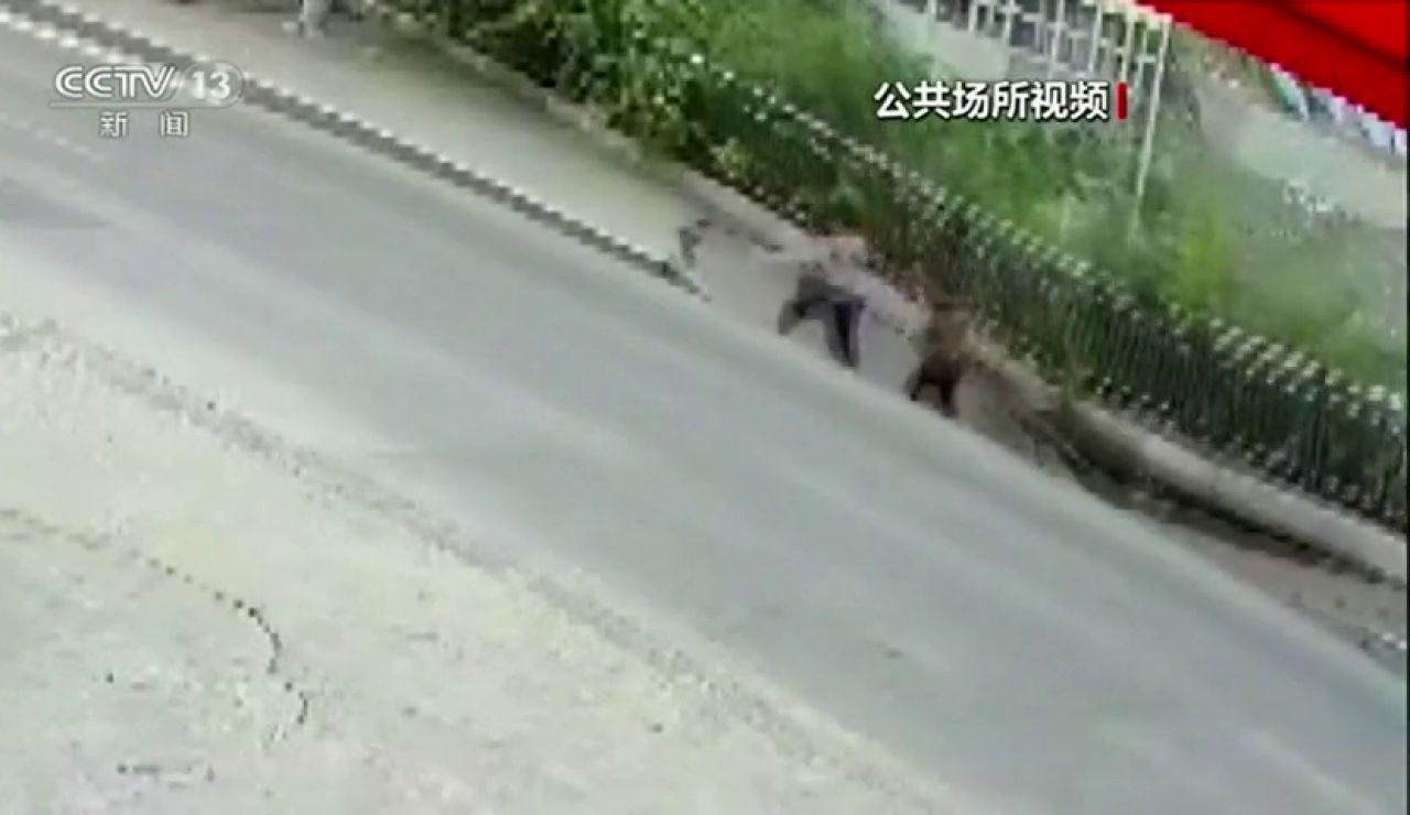 Dos peatones caen al vacío tras derrumbarse la acera por la que paseaban en China