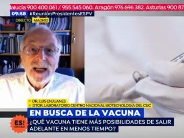 """Luis Enjuanes: """"Posiblemente el próximo invierno tendremos dos o tres vacunas"""""""