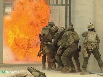 """Un día con los 'boinas verdes', la élite del Ejército español: """"Son soldados del futuro"""""""