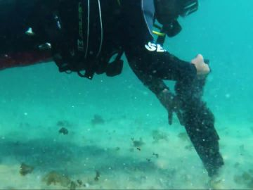 """Saeed Darawashi, el buceador parapléjico ayuda a limpiar el mar en Israel: """"¿Cómo puedo quedarme inmóvil ante esto?"""""""