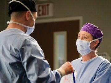 Richard Flood y Ellen Pompeo en 'Anatomía de Grey'