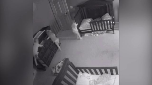 Una cámara de seguridad graba el momento en que tres bebes están apunto de morir aplastados por una comoda