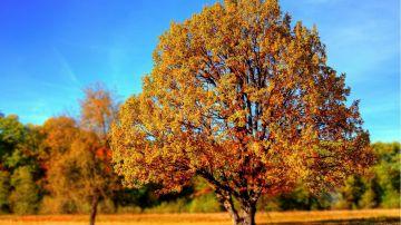 Equinoccio de otoño 2020: Cuándo y dónde ver el equinoccio desde España