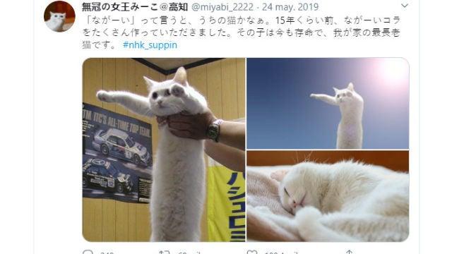Twitter de @miyabi_2222