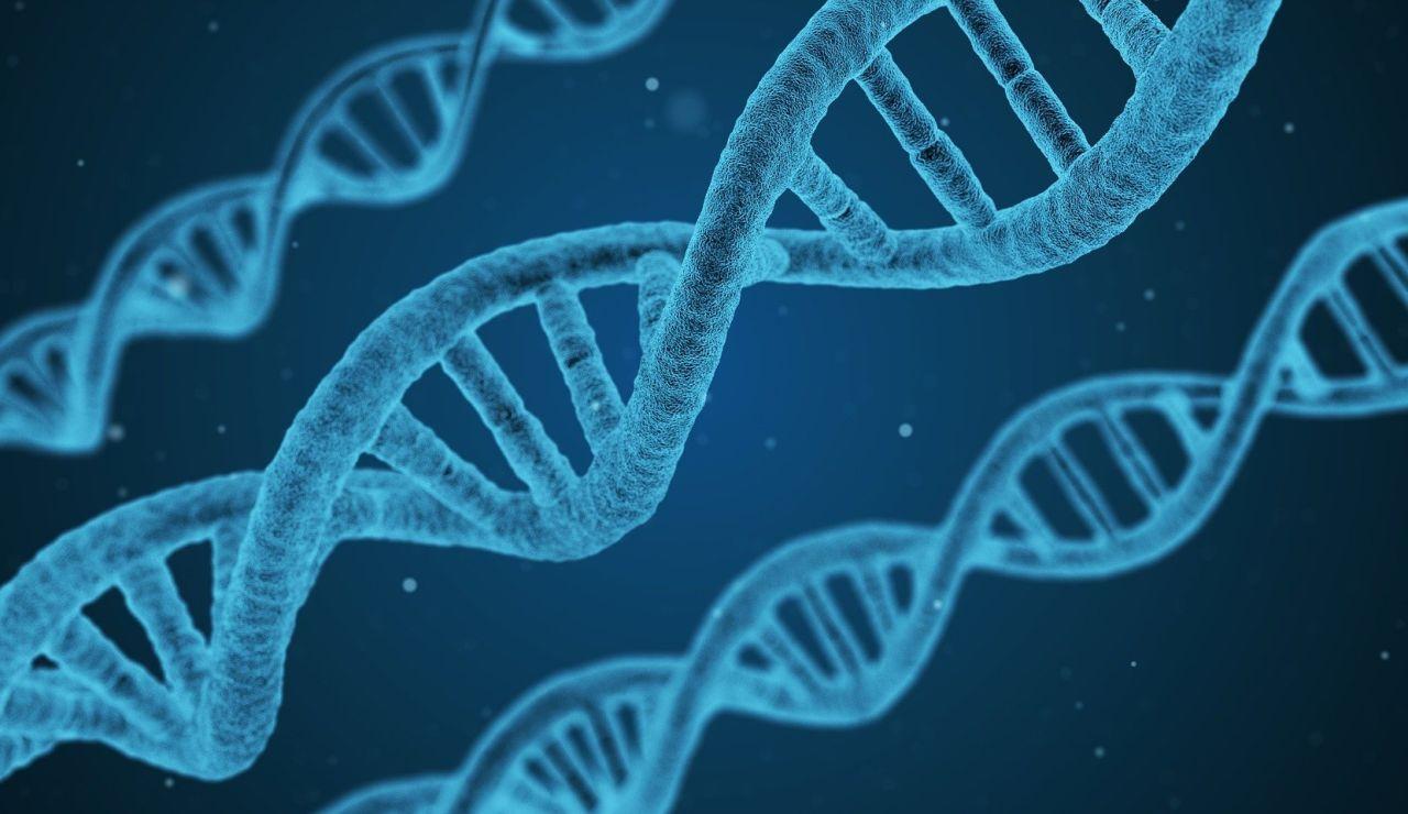 Descubren una nueva enfermedad genética: VEXAS