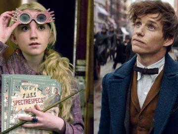 Luna Lovegood y Newt Scamander del universo 'Harry Potter'