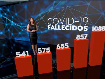 Datos fallecidos por covid
