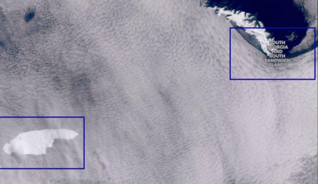 Un iceberg pone amenaza la vida silvestre la isla Georgia del Sur