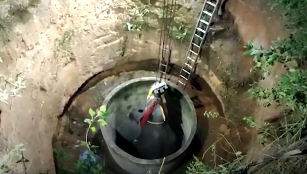 El espectacular rescate de 14 horas a un elefante que cayó en un pozo en la India