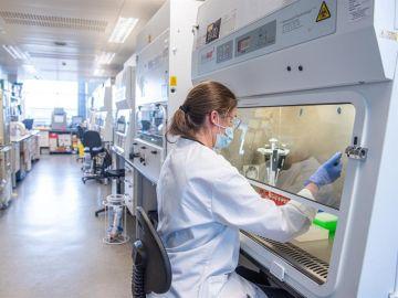 Datos del coronavirus en España | Oxford anuncia que su vacuna tendrá una eficacia del 70,4%