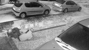 Un hombre se resbala en el suelo helado