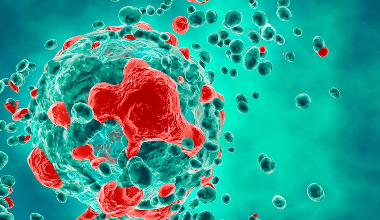 La Universidad de Sevilla consigue un nuevo avance en la búsqueda de una vacuna contra el cáncer