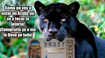Pantera negra loteria de Navidad Granada