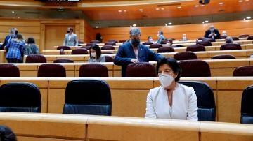 Isabel Celaá, en el pleno del Senado.