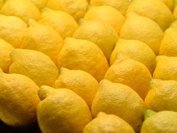 El modelo de producción del limón de Europa, una garantía con sellos de calidad