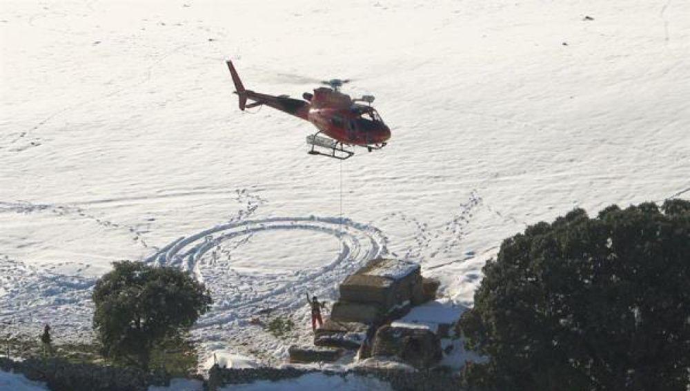 Operación aérea para alimentar a animales aislados por el temporal Filomena