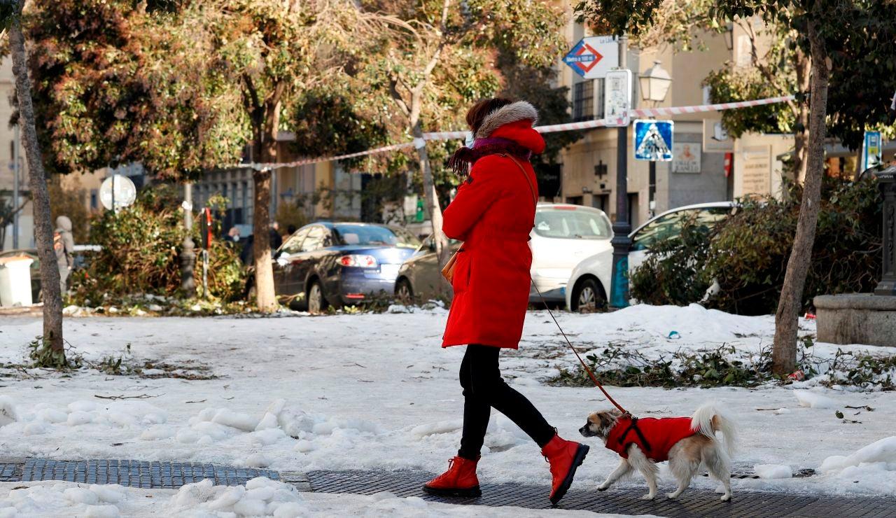 Una mujer pasea con su perro por el centro de Madrid