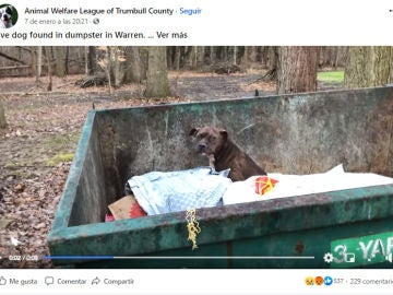 Facebook de Animal Welfare League of Trumbull County
