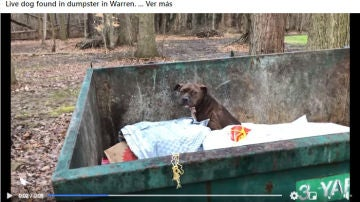 Facebook de Animal Welfare League of Trumbull County