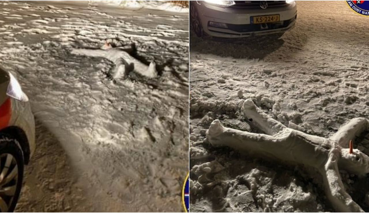 La policía de Amsterdam confunde un cadáver en plena calle con un muñeco de nieve