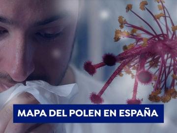 Mapa del nivel de polen en España
