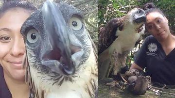 Lohwana Halaq con el águila Sinag