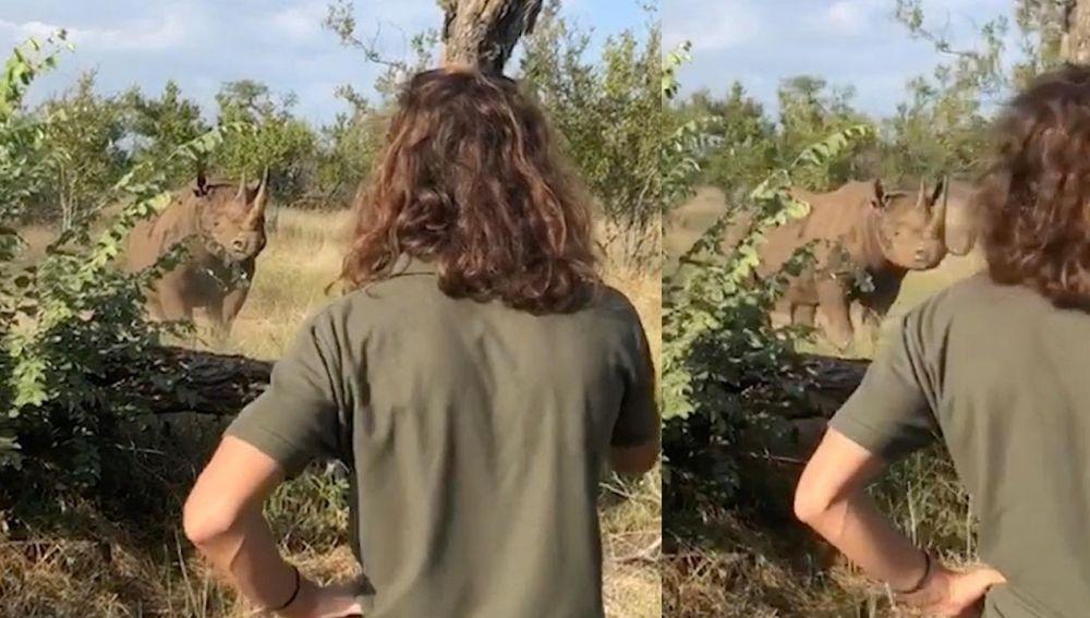 Enfrentándose a un rinoceronte