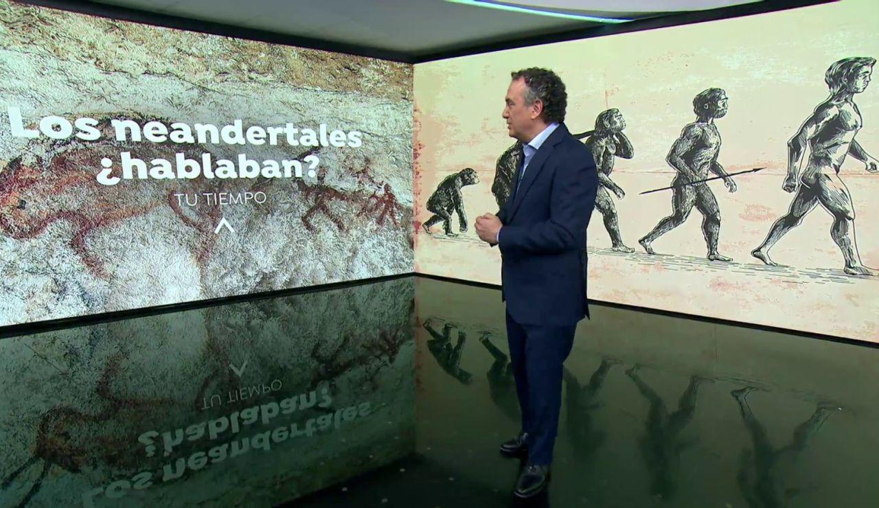 ¿Hablaban los neandertales?
