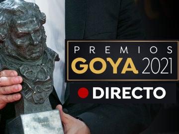 La Gala de los Premios Goya 2021 en directo: Ganadores