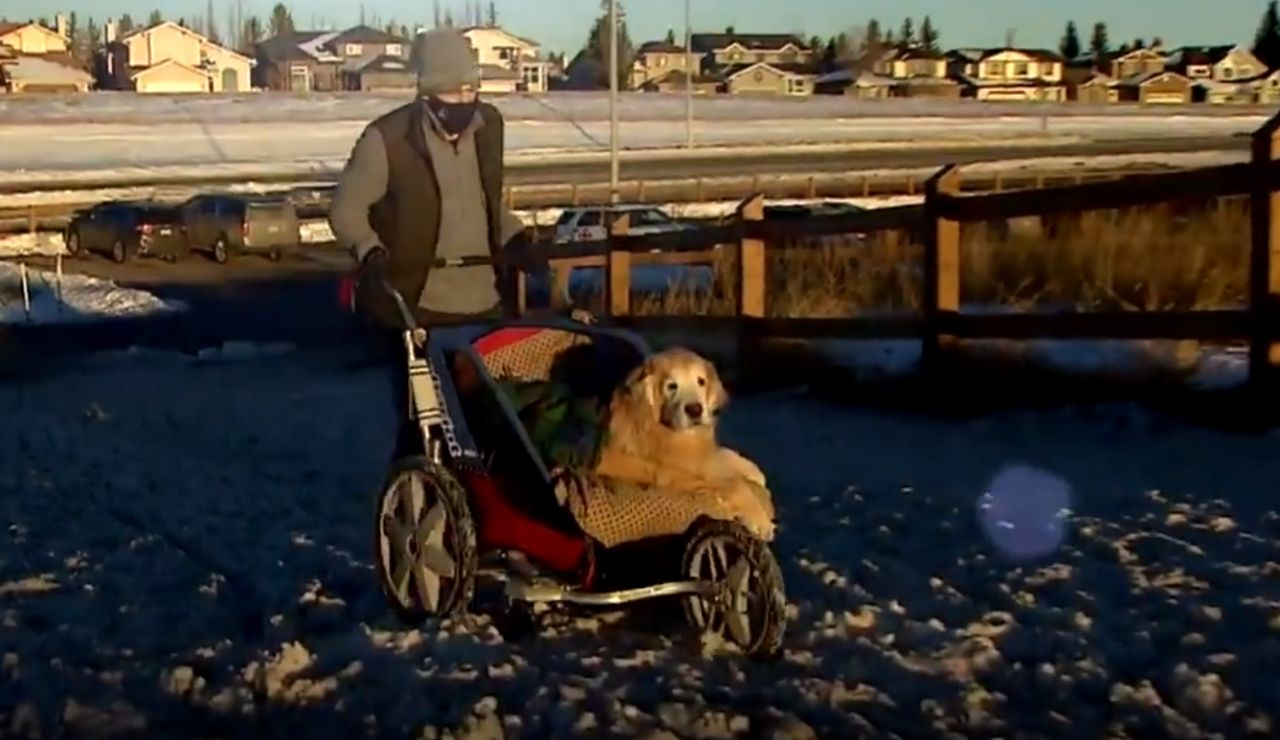Donny Marchuk junto a su perro Sully