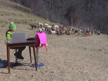 La 'Heidi' italiana que recibe sus clases online en la montaña