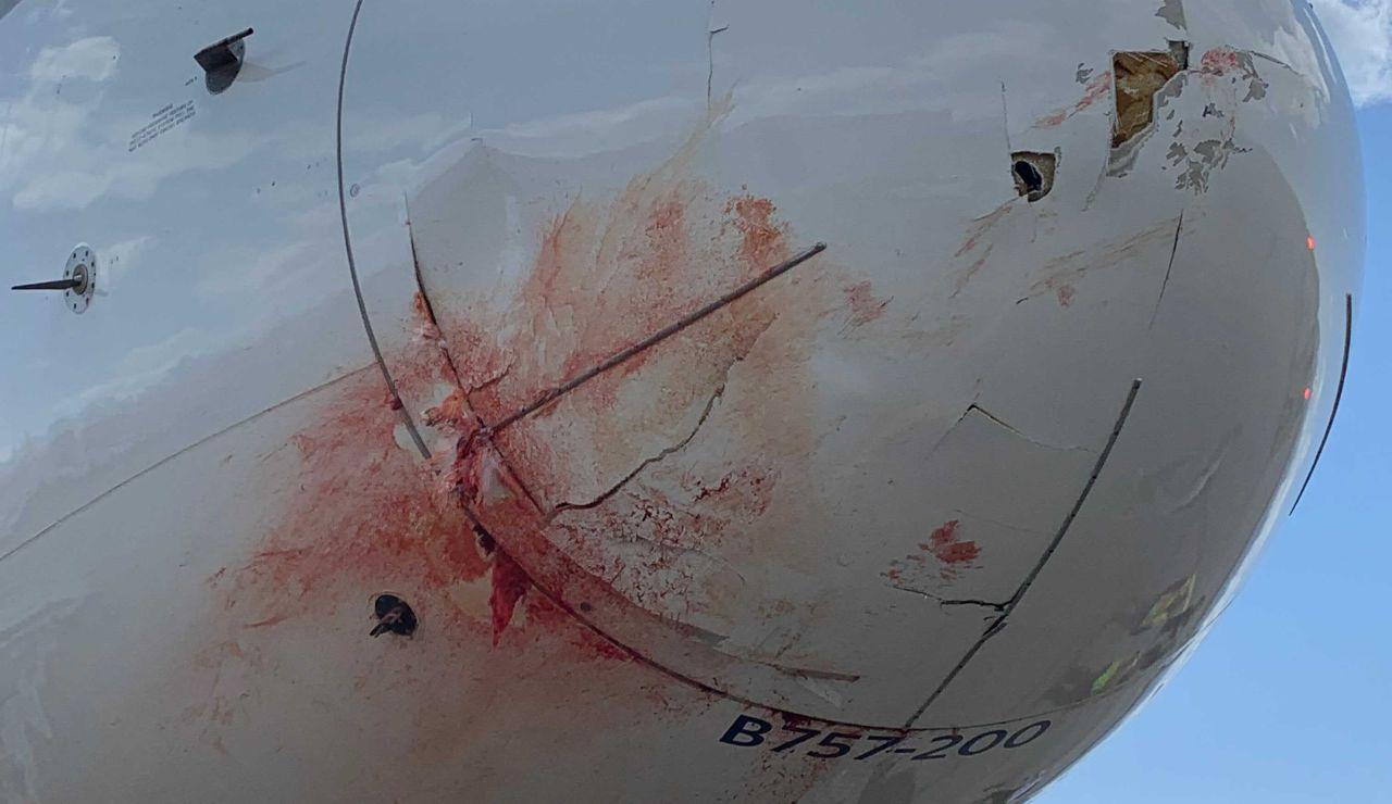 Imagen del avión después del incidente.