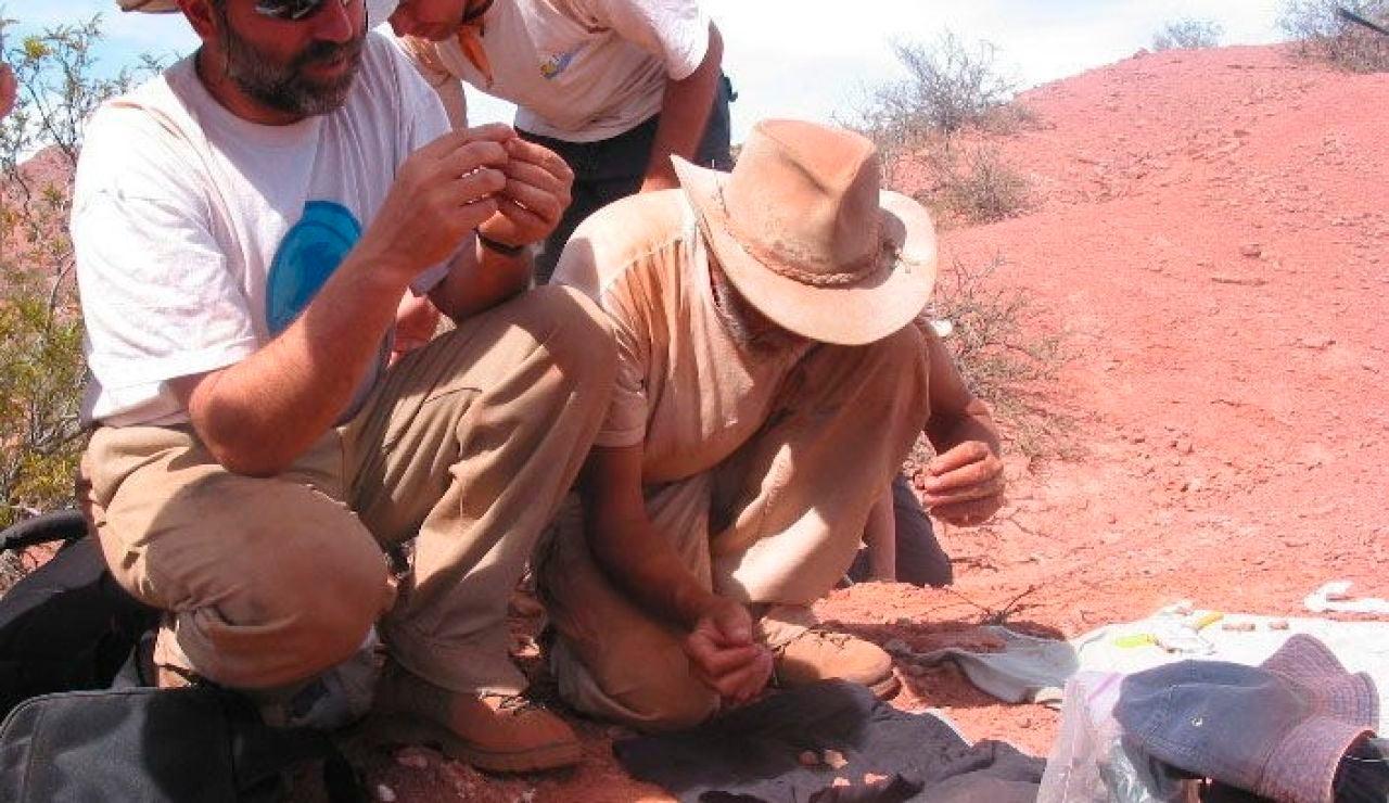 Hallazgo paleontológico en el sur de Argentina