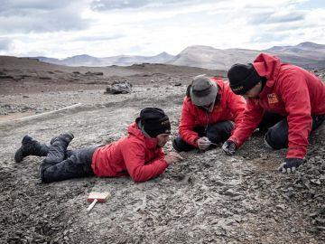 """Descubren un nuevo mamífero de la era de los dinosaurios en Chile al que han llamado """"bestia de 5 dientes"""""""
