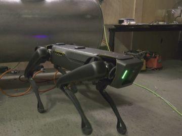 'Robodog', el nuevo robot policía en Países Bajos