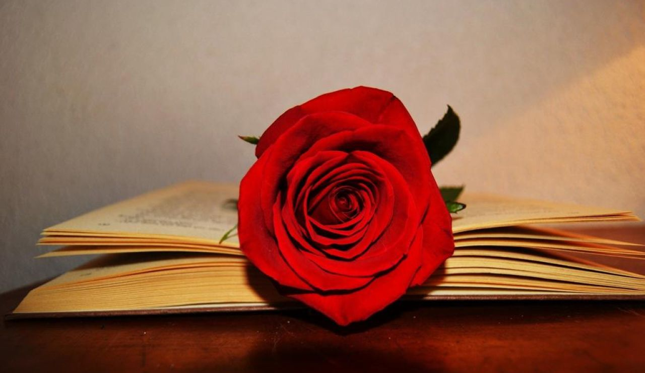 ¡Feliz Sant Jordi 2021! Las mejores frases y poemas para felicitar el 23 de abril