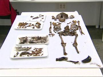 Hallan los restos de una niña de 5 años en la capilla del Alcázar de Sevilla