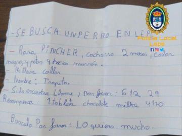 En busca de 'Trapito', el perro perdido de una niña de 12 años