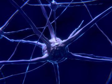 El coronavirus podría afectar a la materia gris del cerebro