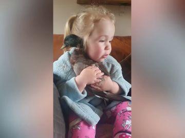 Adorables imágenes de una niña abrazando a su pato derretirán tu corazón
