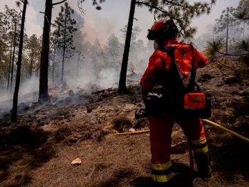 El gobierno de Canarias declara controlado el incendio de Tenerife y baja la emergencia a nivel 1