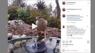 Instagram de Jennifer George