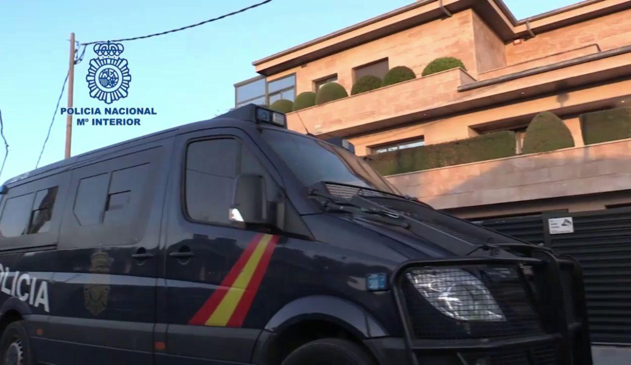 Localizan 23 animales disecados al desarticular un grupo criminal dedicado a la trata de personas en Barcelona