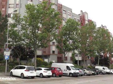 Hallan el cadáver descompuesto de una anciana en Madrid devorado por sus gatos